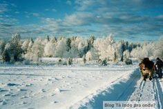 andando de trenó perto de Jönköping - Suécia