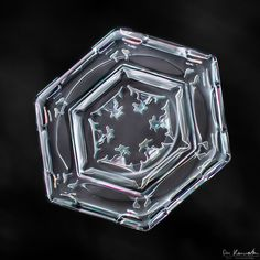 Crystal Clear Snowflake Photos by Don Komarechka - My Modern Metropolis.  This photographer has beautiful pics of snowflakes.  Nature at its finest!!
