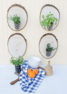 Woodland Herb Garden - Make out of tree rounds and mason jars!