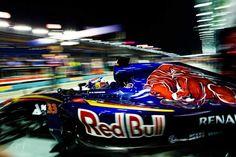 Max Verstappen - Toro Rosso Renault #33 2015