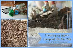 fun and easy way to explore composting! create a mini bin with worms for firsthand exploration.    The Dirt on Composting: DIY Compost Bin with Worms