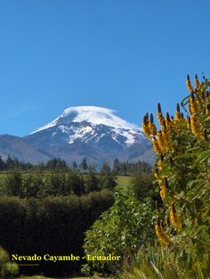 NEVADO CAYAMBE - ECUADOR by Marcelo Quinteros Mena, via Flickr