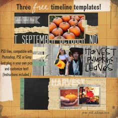 Free Timeline Cover Templates from Project Alicia