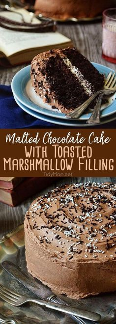 If you only have the chance once in your life to eat chocolate cake, let it be this Malted Chocolate Cake with Toasted Marshmallow Filling. You'll die happy and complete, I promise. Get the full printable recipe at Just Desserts, Delicious Desserts, Dessert Recipes, Yummy Food, Delicious Chocolate, Appetizer Recipes, Chocolate Filling, Layer Cake Recipes, Chocolate Spread