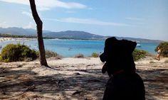 ARES at Cala Puntaldia - Sardinia