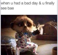 I want a bae :(