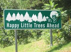 Little trees ahead