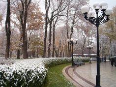 Winter Park jpg