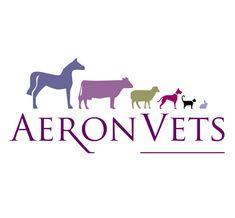 Logo design for Vet