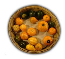 Name: Basket-Gourds_bg.png Views: 1716 Size: 63.1 KB