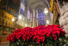 Duke Chapel decorated for Christmas Christmas Service, 1st Christmas, Eve Children, Divinity School, Organ Music, Gospel Of Luke, Advent Season, Online S, Worship Service