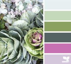 Not sure that is the correct shade of pink, but I LOVE the actual nature-inspired photo to the left.