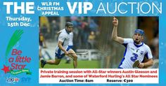 Learn to hurl like an All-Star! A private training session with @aussiegleeson & @jbarron_26 is one item in our VIP Auction in aid of St.Vincent De Paul next week! #BeALittleStar #GiveWhereYouLive #Waterford #hurling #AustinGleeson #JamieBarron