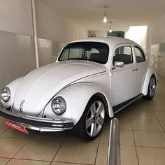 VW Volkswagon Bug, Volkswagen Golf, Vw Super Beetle, Beetle Bug, Fusca German Look, Custom Vw Bug, Black King And Queen, Car Camper, Vw Cars
