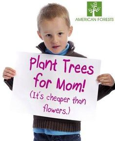 Looking for a green gift for Mom? For the gift that keeps giving, plant trees in her name!