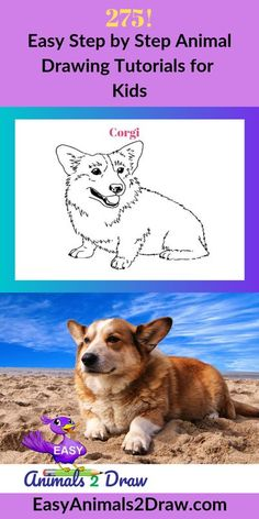 Learn how to draw an amazing Corgi dog with this easy and inspirational step-by-step drawing tutorial for kids of all ages! Start by drawing the head of the dog. Draw a curved line in graphite pencil.......#how to draw a dog #how to draw animals#drawing # Dog Drawing For Kids, Dog Drawing Simple, Drawing Tutorials For Kids, Painting Tutorials, Easy Drawings Sketches, Fish Drawings, Horse Drawings, Animal Drawings, Corgi Drawing