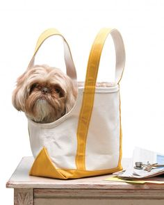 "Canvas Tote ""Doggie Bag"" Transform an ordinary canvas tote into a practical and fashionable ""doggie bag"" pet carrier. Learn How to Make a Canvas Tote Doggie Bag Labradoodle, Maltipoo, Havanese, Yorkies, Summer Accessories, Pet Accessories, Martha Stewart Pets, Alter Pullover, Dog Sling"
