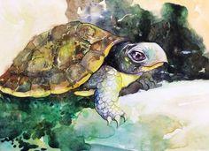 Watercolor Desert Tortoise Painting, Tortoise Art Print, Western Art, Desert Painting, Giclee Turtle, Reptile Print,Illustration Art