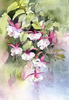 Rachel Mcnaughton -Fuchsias Watercolor Negative Painting, Watercolor Sea, Watercolor Pictures, Watercolor Flowers, Art Floral, Blossom Flower, Flower Art, Mediums Of Art, Beautiful Paintings