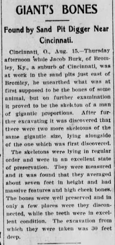 More nonsense from Fritz Zimmerman. Even if the story is true which is doubtful 7 ft tall doesnt constitue a giant. And besides what happened to these gigantic skeletons? Giant Skeleton, Human Skeleton, Ancient Mysteries, Ancient Artifacts, Ancient Aliens, Ancient History, Ufo, Cincinnati, Giant People