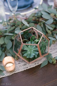 Copper terrariums filled with succulents, air plants and live moss line the head table along a garland of seeded eucalyptus and a lace runner.