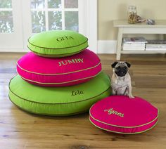 Love these Monogrammed Dog Beds for Under $40!