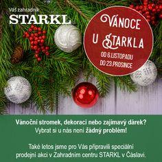 """Každoročně je tu naše nejoblíbenější prodejní akce """"Vánoce u Starkla"""", která probíhá v našem zahradním centru od dnešního dne do 23. prosince. Během akce """"Vánoce u Starkla"""" u nás bude probíhat také adventní floristika (od 20.11. do 3.12) a vánoční floristika (od 4.12. do 23.12.). Aranžmá můžete objednávat telefonicky na čísle: +420 731 445 141 📞 #vanoceustarkla #vanoce #zahradnicentrum #zahradnictvi #starkl #floristika #aranze #caslav"""