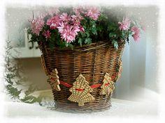 girlanda-stromek+v+přírodní-sleva+z+122,-+girlanda+obsahuje+4+ks+stromečky+menší+a+1+ks+stromek+velký+Je+na+červené+vánoční+stuze,+která+je+dlouhá+cca+90+cm+Je+zatřen+oxidy+v+přírodním+odstínu+Girlandou+si+můžete+ozdobit+nudné+truhlíky,+květináče,+parapet,+trámy...+Girlandu+buď+kolem+květináče+obvážete+nebo+ji+přichytíte+k+rantlu+truhlíku+kolíčkem,+můžete+i...