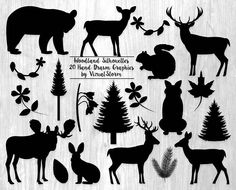 Woodland Silhouettes. 20 hand drawn forest graphics. #woodlandsilhouette #forestsilhouette #forestanimals #woodlandanimals #animalsilhouette #plantsilhouette #woodlandclipart #forestclipart