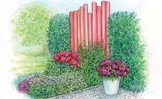 Die Farbe der Robinien-Stämme wird von der Flammenblume wieder aufgenommen. Das Purpurglöckchenlaub und die Bart-Nelke im Topf haben einen etwas dunkleren Ton. Rosa-weiße Sterndolde und weißer Storchschnabel bilden einen erfrischenden Kontrast