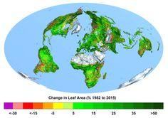 A Terra está mais verde do que 33 anos atrás graças ao CO 2 | Ciência | EL PAÍS Brasilhttp://brasil.elpais.com/brasil/2016/04/25/ciencia/1461594503_011618.html