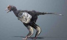 Inikah Burung Pertama di Dunia