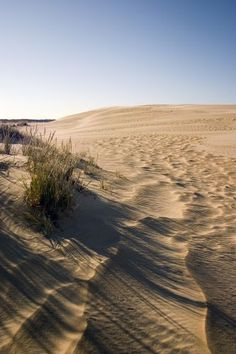 Jockey's Ridge State Park, Nag's Head, NC