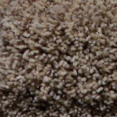 Install delightful I stage lights frieze carpet from firststepflooring. It is made of Solution Dyed Polyester. This Carpet has woven polypropylene backing Frieze Carpet, Stage Lighting, First Step, How To Dry Basil, Herbs, Yard, Quote, Flooring, Lights