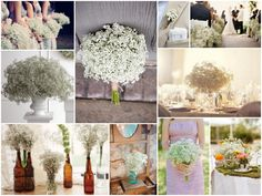 Cheap Backyard Wedding | baby's breath bouquet, baby's breath wedding, white wedding, baby's ...