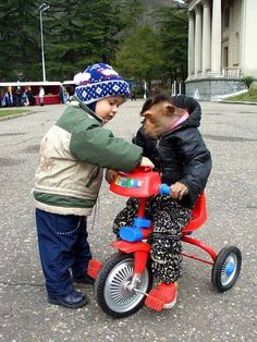 This is the best picture of a kid helping a monkey ride a bicycle I've ever seen.