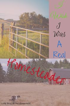 Can you really be a homesteader without tons of acres? I think you can, even if I am anxious for the acres!
