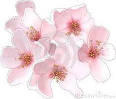 Free clip art of a pink cherry blossom flower sweet clip art cherry blossom imagescherry sciox Images