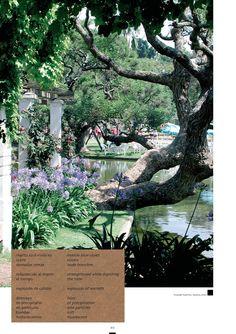Espiritualidad Contemporánea: ESTE   del libro Punto Cardinal de Moni y José Vega
