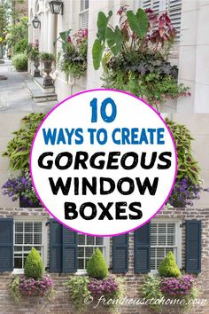 These Charleston window boxes use beautiful shade and sun plants to add great curb appeal to the front yard garden. Get inspiration from their window box ideas to design gorgeous flower box plant combinations for your own home. Window Box Plants, Window Box Flowers, Shade Flowers, Shade Plants, Window Boxes Summer, Railing Flower Boxes, Window Planters, Planter Boxes, Ideas Vintage