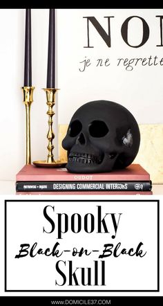 Black on Black Skull   Creepy Halloween Decor   Halloween Decor and DIY