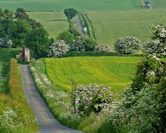 """pagewoman: """" May Blossom, Scotland ❀ """" Country Life, Country Roads, Country Living, Interior Garden, English Countryside, Pathways, Scotland, Trail, Beautiful Places"""