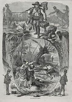 Angler Cartoon, French, 19th century.
