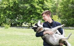 Siberian Husky in the hands of guy.  Stock image: https://secure.istockphoto.com/gb/photo/owner-and-siberian-husky-on-a-walk-in-the-park-gm532573410-94293431 #istock #siberianhusky #husky #dogs #pets #man #guy #friend #microstock #イヌ #개 #犬