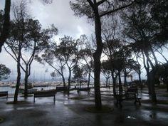 Fezzano, presentato un progetto per il raddoppio del porticciolo: le osservazioni dell'Associazione Posidonia
