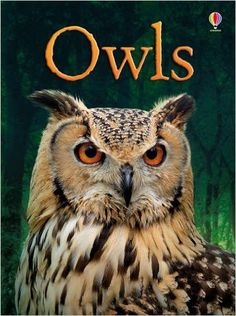 A fascinating introduction to owls, including nesting, hunting, living at night and camouflage. How do owls find their way in the dark? What do they eat? What is a baby owl called? Find out the answer
