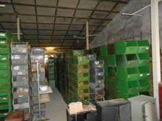 +-01500 oude metalen stapelbakken, 15 euro pst
