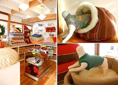 Step Into George, the Dog Boutique of Our Dreams