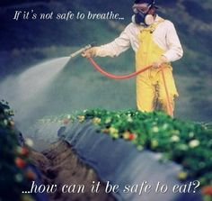 if you can't breathe it...