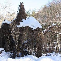 【rikobou2】さんのInstagramをピンしています。 《先週の森の神様達😊 ま、夏場は別荘として貸し出してるわけなんだけど( ̄ー ̄)♪ ・ 暖かさと雨で、 雪は随分溶けたけど、 明日からまたグッと冷えて、 全然上がらないらしい。 また、しもやけ腫れちゃうなあ。 1/30 #蔓#雪#森#自然#冬 #vine#snow#forest#nature#winter#beautiful#happy#lovely#favorite#instagram#instagramjapan#instalife#instagood#canon#EOS40D#eos40d#18_200mm#camera#photo#canonphotography》